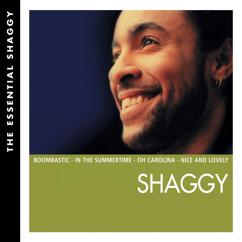 Shaggy: Essential