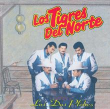 Los Tigres Del Norte: Sabas Lopez (Album Version)