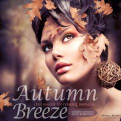 Various Artists: Autumn Breeze - Chill Sounds for Relaxing Moments