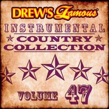 The Hit Crew: Drew's Famous Instrumental Country Collection (Vol. 47)