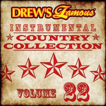 The Hit Crew: Drew's Famous Instrumental Country Collection (Vol. 22)