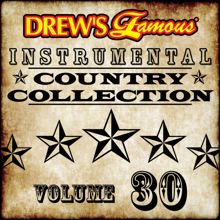 The Hit Crew: Drew's Famous Instrumental Country Collection (Vol. 30)