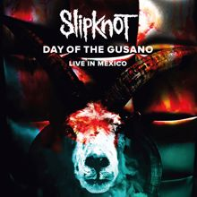 Slipknot: Before I Forget (Live)