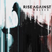 Rise Against: The Violence