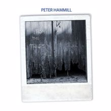 Peter Hammill: On Deaf Ears