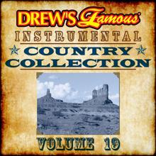 The Hit Crew: Drew's Famous Instrumental Country Collection (Vol. 19)