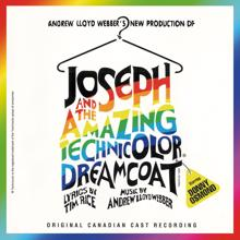"Andrew Lloyd Webber, Donny Osmond, ""Joseph And The Amazing Technicolor Dreamcoat"" 1992 Canadian Cast: Joseph And The Amazing Technicolor Dreamcoat (Canadian Cast Recording)"