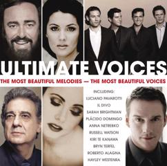 Various Artists: Ultimate Voices